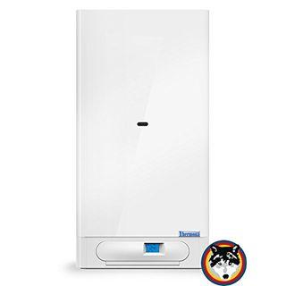 Kombitherme Gastherme Thermona CXE.AA 20 kW Wasser+Heizung Austausch