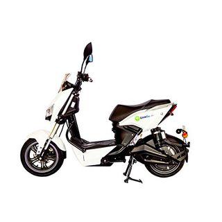 GinkGo R1 Elektroroller mit Straßenzulassung