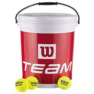 Wilson Tennisbälle Team Trainer (72)