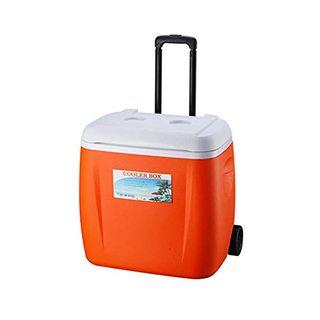 cypressen Passive Kühlbox Thermobox