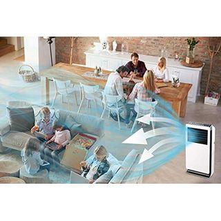 Sichler Haushaltsgeräte Verdunstungskühler: Design-Verdunstungs-Luftkühler