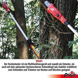 Spar SET Grizzly Akku Hochentaster AKS 1820 T Lion Set