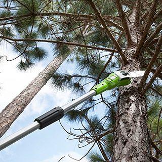 Greenworks Elektro Hochentaster Astschere
