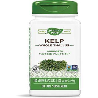 Nature's Way Kelp 600 mg