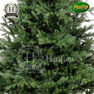 Spritzguss Weihnachtsbaum.Original Hallerts Spritzguss Weihnachtsbaum Oxburgh 150 Cm Als Nobilis