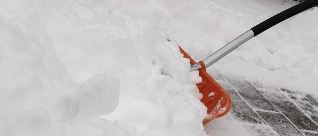 Schneewanne Test und Vergleich