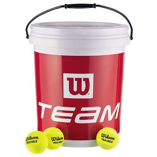 Wilson Tennisbälle Team Trainer (72)