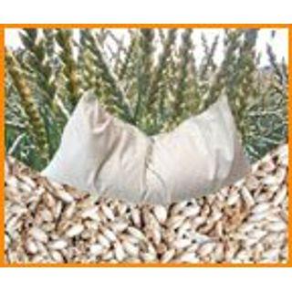 Bio Dinkelkissen 40 x 80 cm weiß